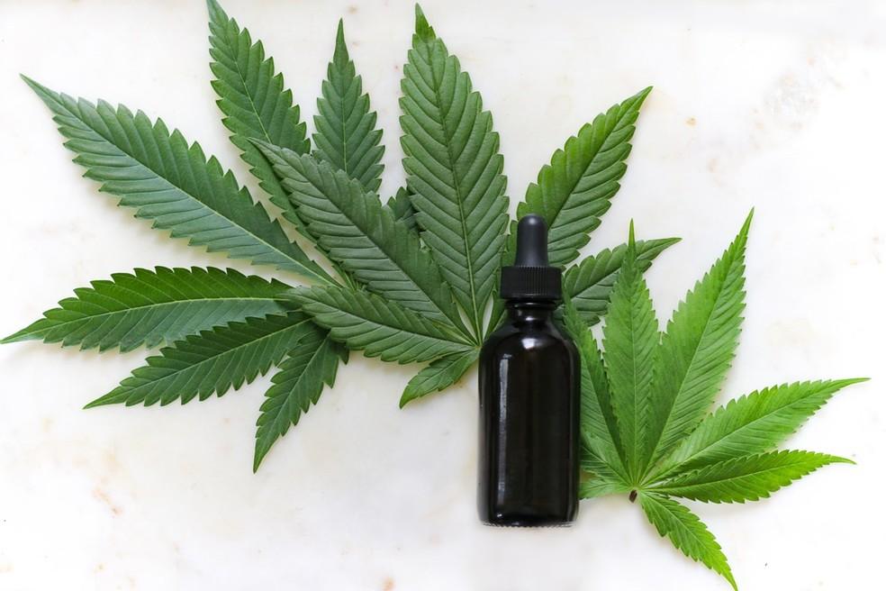 Anvisa autoriza fabricação e venda de medicamentos à base de Cannabis.